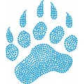 Grizzly Bear Paw - Design